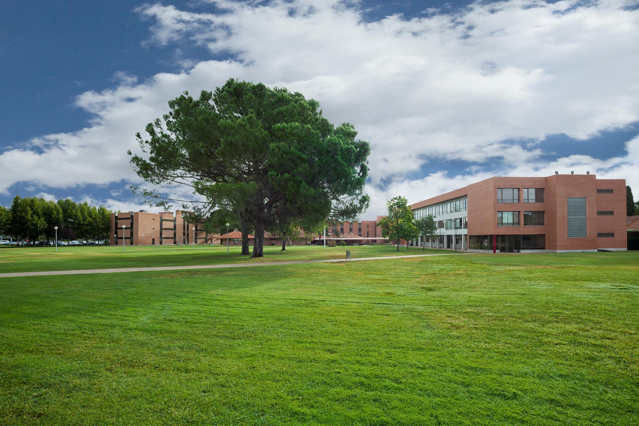 premios campus
